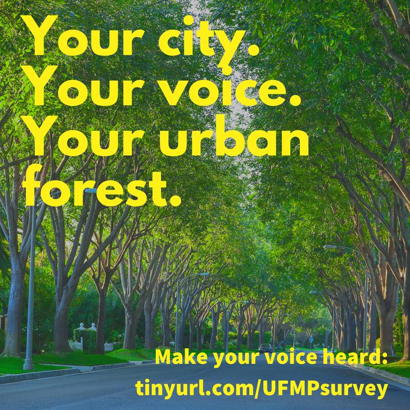 City-Plants-Trees